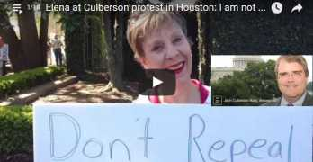 John Culberson rally protest