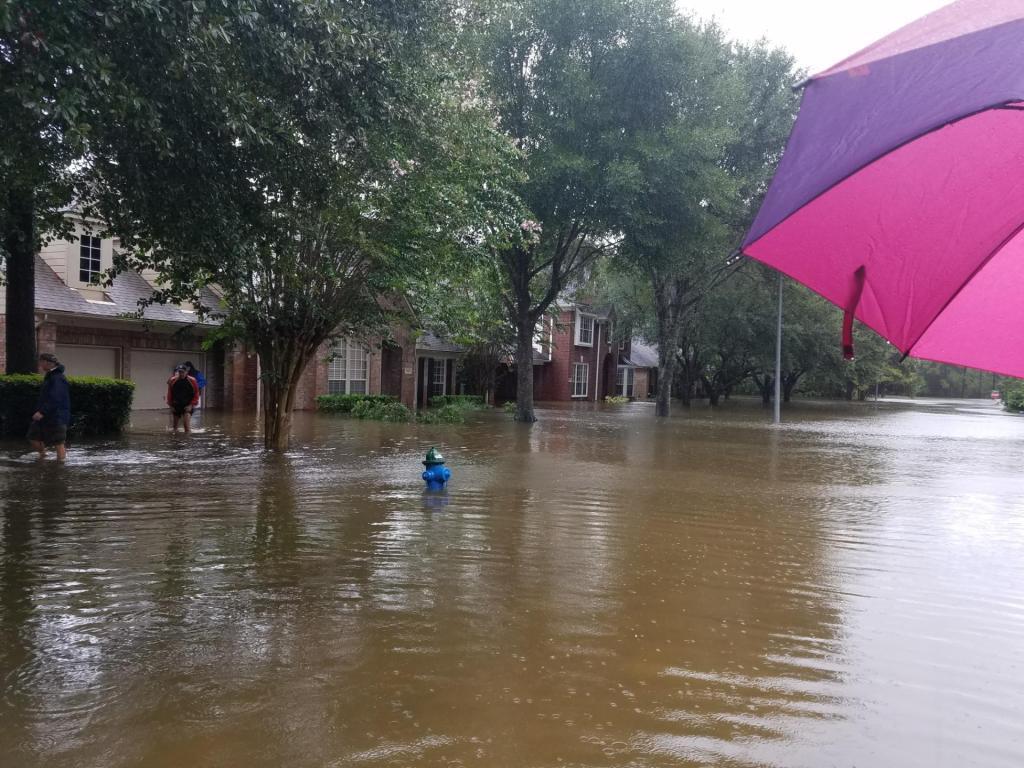 Kingwood Texas Houston Flooding Hurricane Harvey