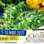2.Bodrum Acı Ot Festivali 2019