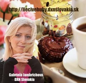 dxnslovakiawebshop12 (300 x 288)