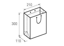 Вертикальный бумажный пакет В210x300x110