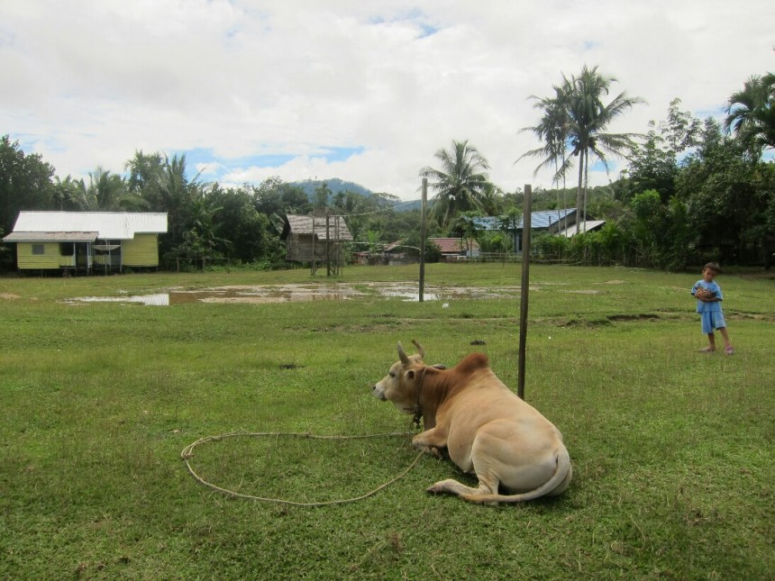 The school field in Rantau Malam
