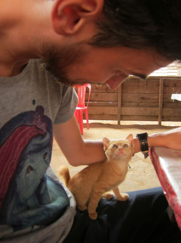 """A little kitty that took a liking to me while we ate lunch. """"Want to take?"""" asked the owner. We were very tempted, but it would have been very difficult logistically. Damn you kitty, why were you so loveable and cute?"""