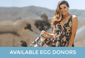 View our egg donors today!