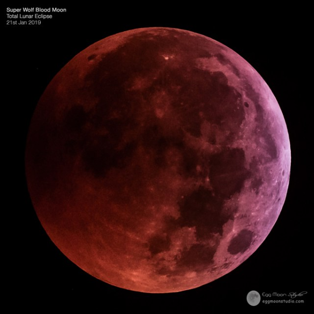 Super Wolf Blood Moon, Total Lunar Eclipse 2019. Final processed image, taken from Liverpool on 21st Jan 2019.