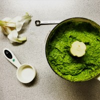 resourceful hands, all-the-greens interchangeable pesto