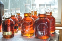 Maple Syrup Production in PA - Who Knew?
