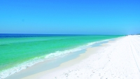 Florida's Suncoast:   The Perfect Winter Retreat