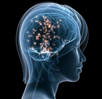 Staying Sharp – Take the Brain Assessment