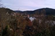 Samedi 1/10. 1 h 15 de marche environ pour atteindre Titisee, petit village très touristique (et un peu trop clinquant à mon goût).
