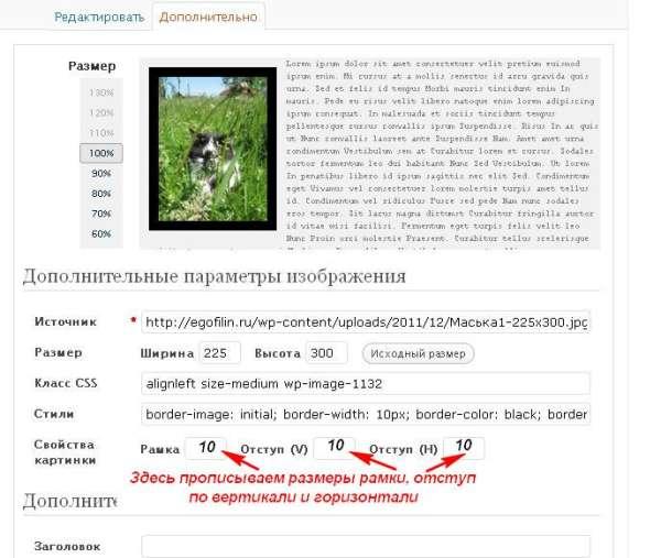 Вставляем картинки и текст на wordpress. | Заработок в ...