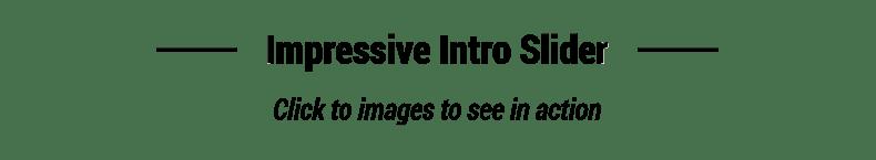 Purism - WordPress Blog Theme - 8
