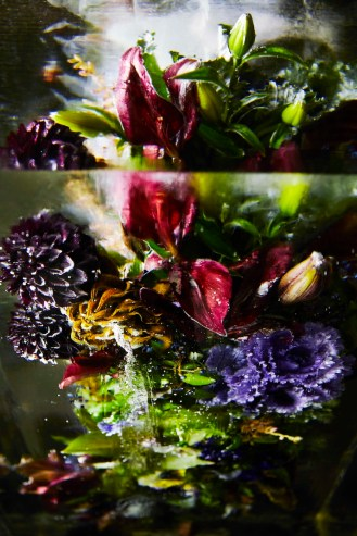 ICED-FLOWERS-6