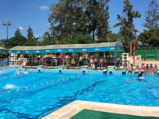 تدريبات السباحة نادي جرين لاند المنتزة