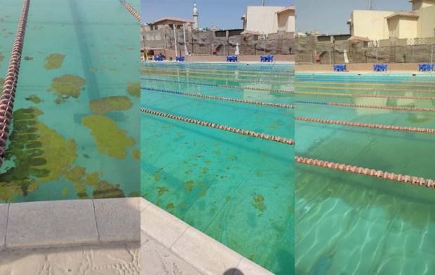 حمام السباحة بنادي المعادي فرع القطامية