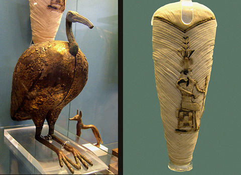 Ibis statuette and mumified ibis (British Museum)