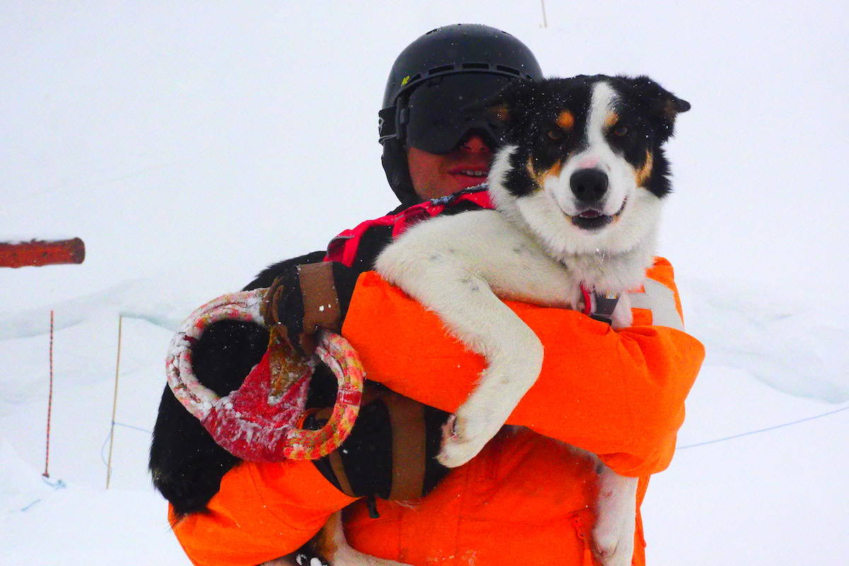 Fernie ski patroller Paul Vanderpyl, with his two-year-old avalanche rescue dog, Drift. (Scott Tibballs / The Free Press)