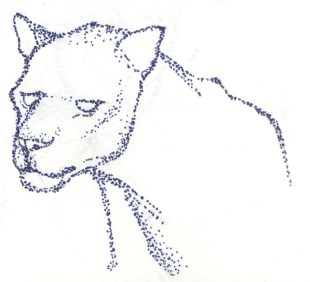 Panther stipple pen drawing