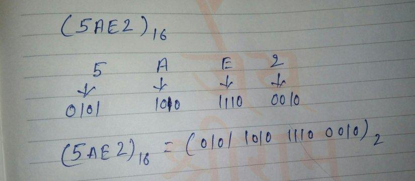 Hexadecimal to binary conversion