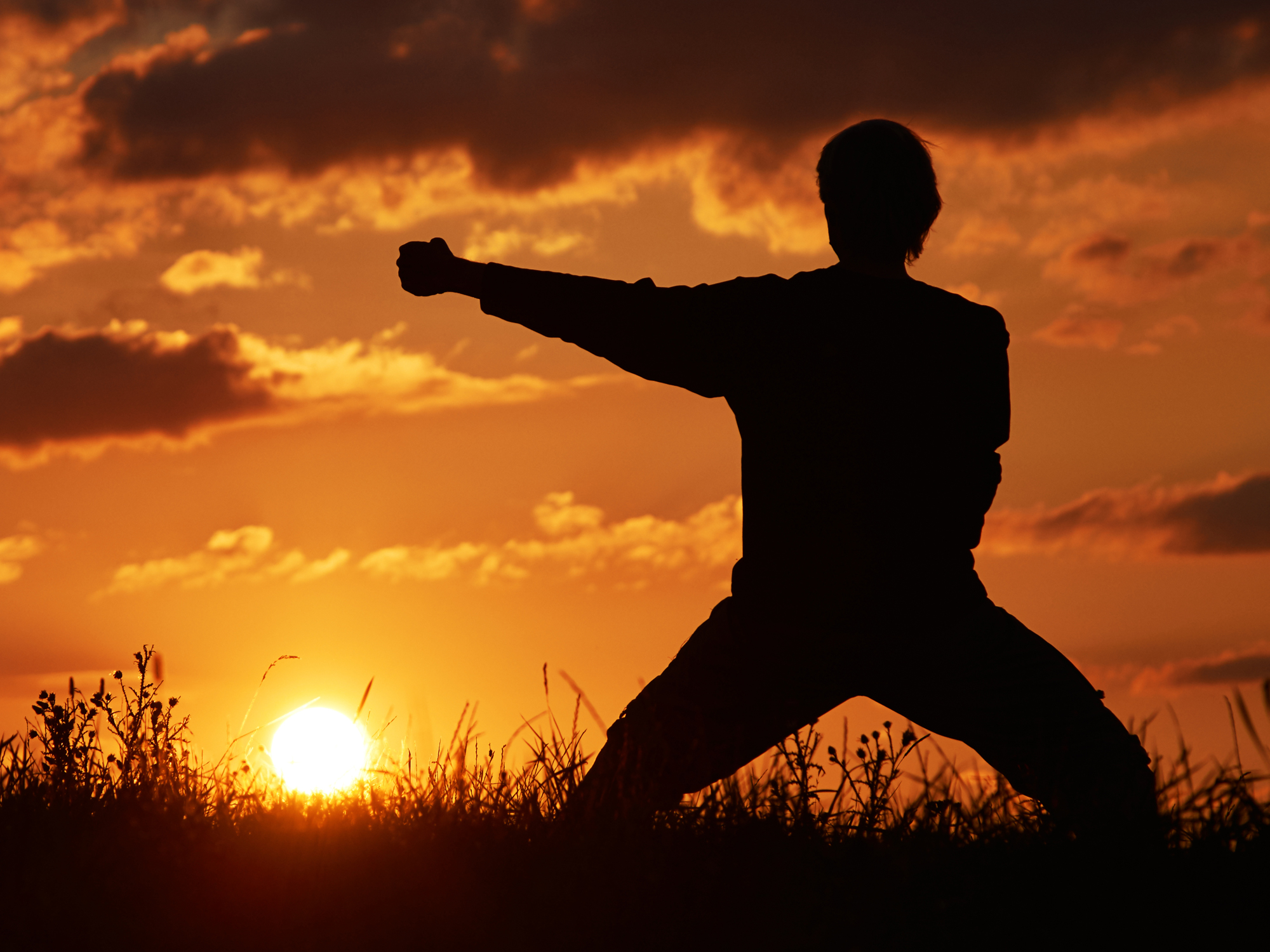 The Zen Warrior S Path To Whole Health Easy Health Options 174