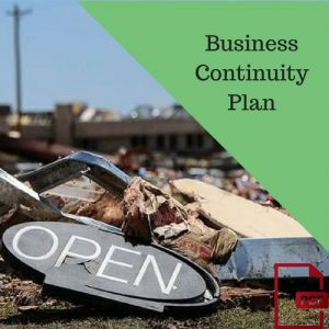 business disaster plannig guide