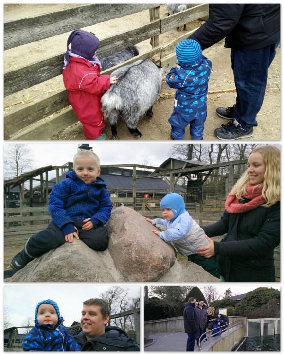 Tur i zoo
