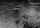 [eiberri.eus] Inestable, lluvia y ratos de sol durante esta semana