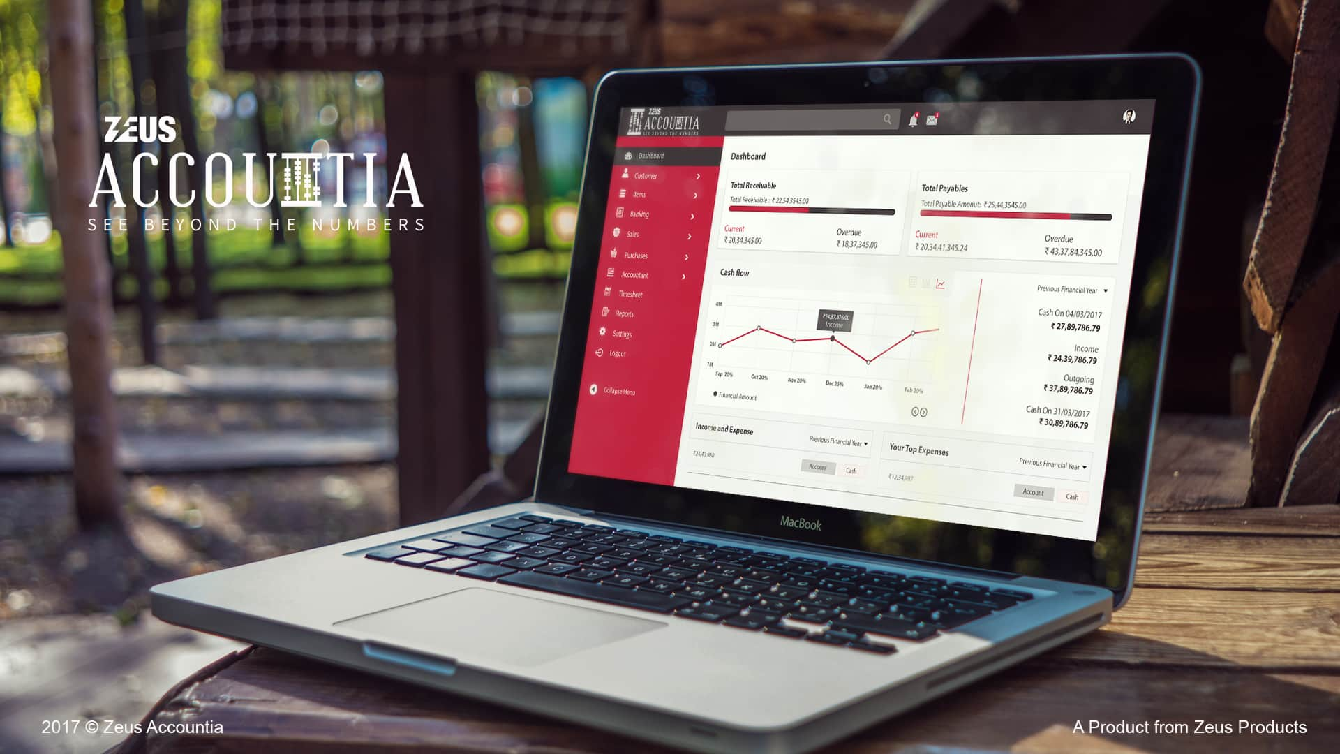 Zeus Accountia Mock up Software portal
