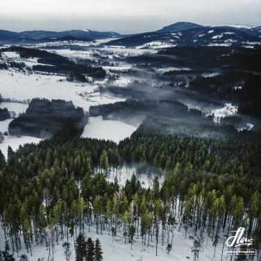 Bayerischer Wald, Deutschland.
