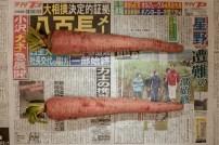 PovertyLineJapan+22+1(1500)