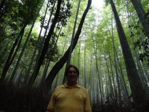 15-06-2016_kyoto_bamboo-grove_03-walter