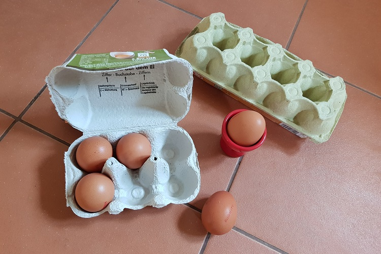 Eier richtig lagern