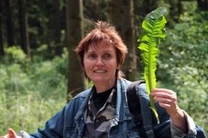 Der Löwenzahn, so Kräuterpädagogin Ellen Wortmann, hilft nicht nur bei Magenschmerzen, er kann auch recht schmackhaft zubereitet werden. Bild: Michael Thalken/Eifeler Presse Agentur/epa
