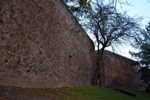32.000 Euro stellt der Bund für die Sanierung der Euskirchener Stadtmauer zur Verfügung. Bild: Claudia Hoffmann