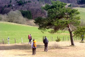 Das Wanderwegenetz im Kreis Euskirchen soll komplett erneuert werden, dafür stehen knapp 800.000 Euro zur Verfügung. Bild; Michael Thalken/Eifeler Presse Agentur/epa
