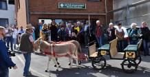 Vor dem Getränkeshop Rosenbaum stehen die Esel von Werner Scherer mit der Kutsche bereit, um den Jubilar zum Fest im Bürgerhaus zu kutschieren. Foto: Reiner Züll