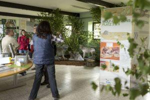 Wenn die Wolfsausstellung des NABU am Wochenende zu Ende geht, dann haben mehr als 1000 Leute sich vor Ort über den Wolf informiert. Bild: Rainer Liedtke