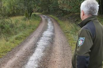 Über 200 Meter erstreckt sich der Ölfilm auf dem Wanderweg Kohlweg. Das Wegematerial musste durch eine Spezialfirma entfernt und entsorgt werden. Foto: Nationalparkverwaltung Eifel/M. Weisgerber