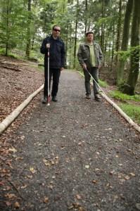 Fein geschotterte Wege von 4,7 Kilometer Länge und maximal sechs Prozent Neigung (als Rundweg mit max. 8 Prozent) führen durch den barrierefreien Naturerlebnisraum Wilder Kermeter im Nationalpark Eifel. Bild: U. Giesen