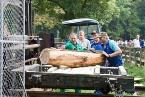Am Sägegatter werden mit historischen Maschinen Bretter aus Stämmen gesägt. Bild: Tameer Gunnar Eden/Eifeler Presse Agentur/epa