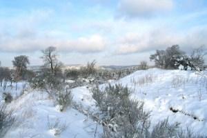 Auch zwischen den Jahren können Besucher mit einem Ranger die winterliche Landschaft durchstreifen. Bild: Nationalparkverwaltung Eifel