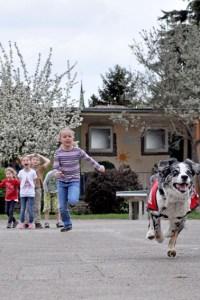 Das Wettrennen dient dazu, den Kindern zu verdeutlichen, dass man, auch wenn man Angst hat, nie vor einem Hund weglaufen sollte. Denn er ist immer schneller. Bild: Carsten Düppengießer