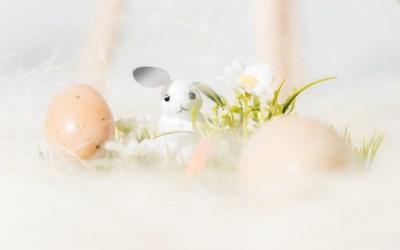 Mini Shooting Angebot zu Ostern nur 49€