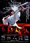 里見八犬伝(1983年)