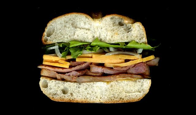 Scanned cross-section of a sandwich