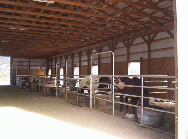 Horse Hotel Stables