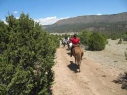 colorado trail riding