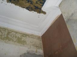 Plastering 025