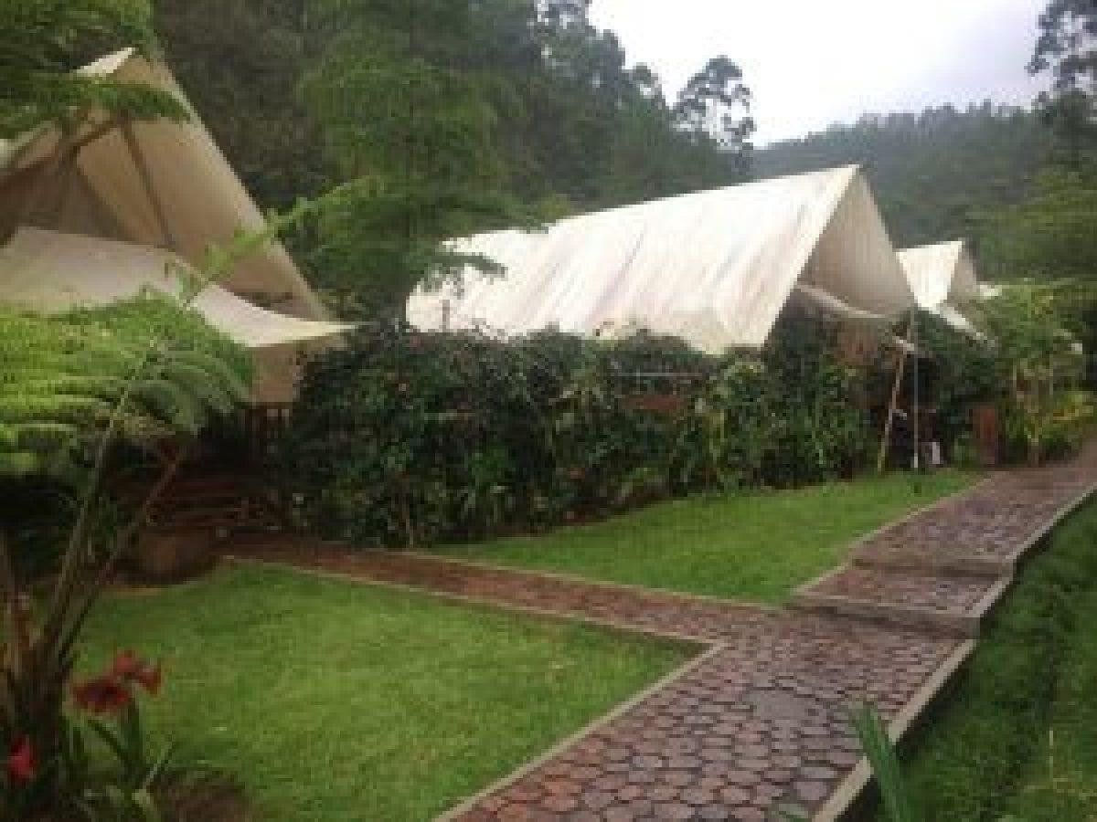 Tenda Standar di Glamping Legok Kondang Ciwidey