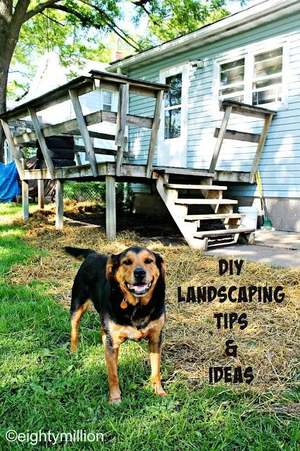 DIY Landscaping Tips & Ideas:  Dealing with muddy paws